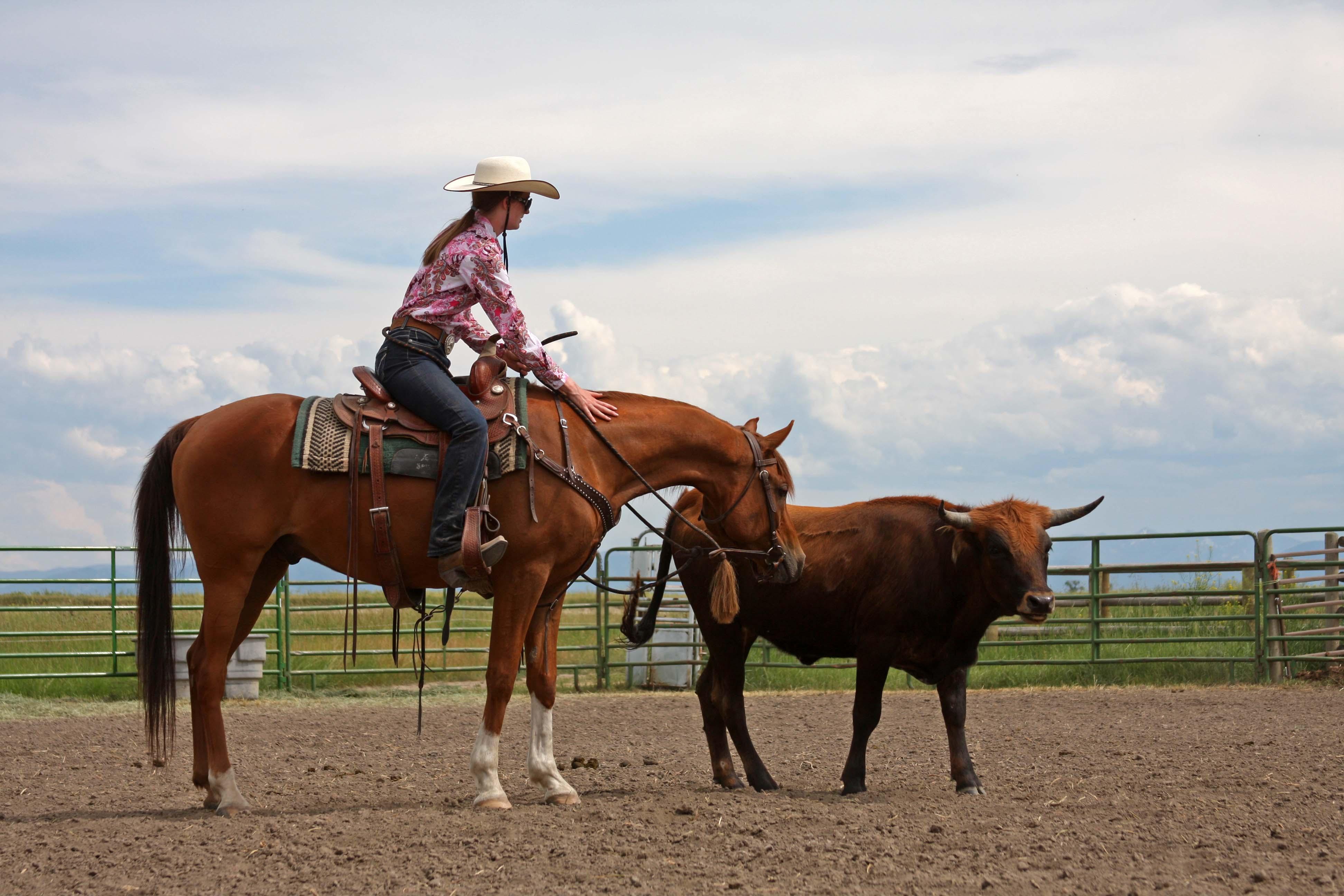 Western Sky Horsemanship